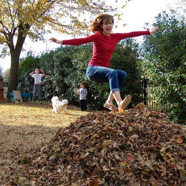Leaf Jumping haiku