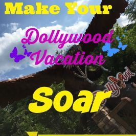 Five tips to make your Dollywood Vacation soar