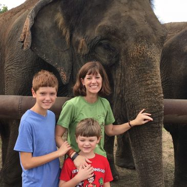 Elephant Sanctuary in Hugo Oklahoma