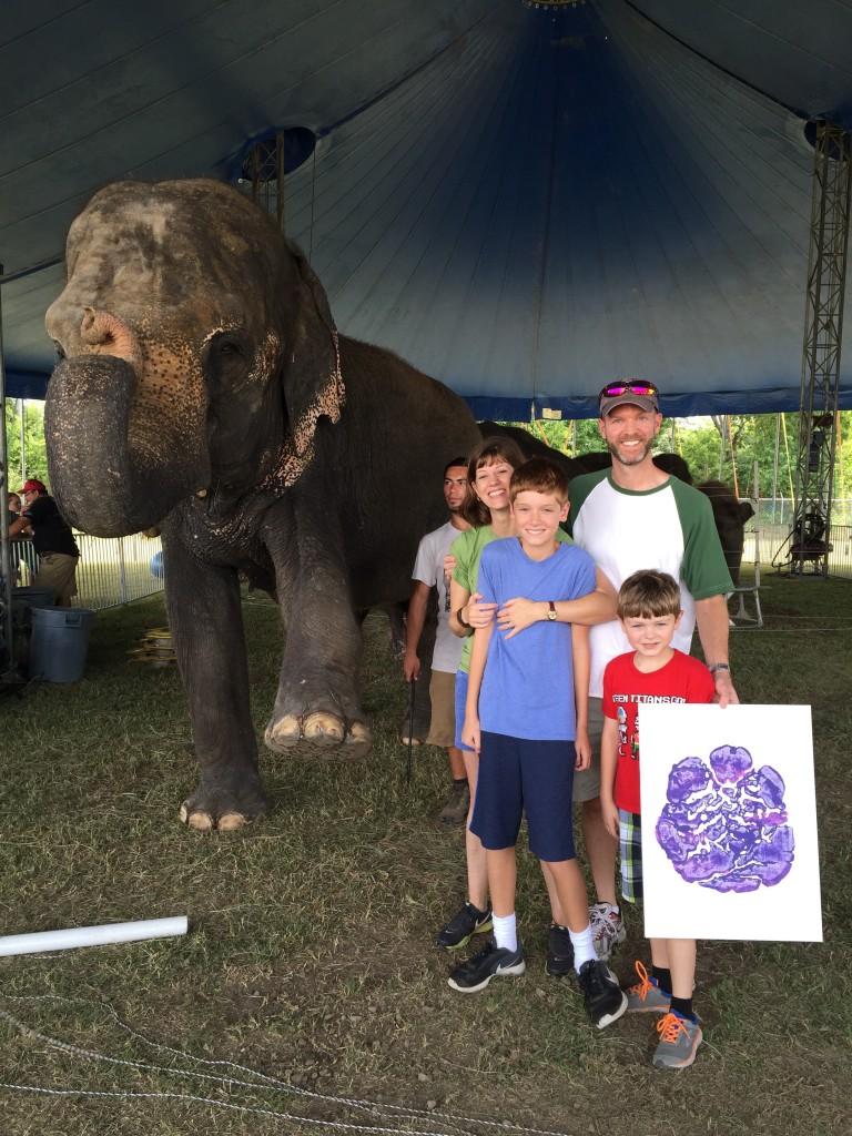Elephant Sanctuary In Hugo Oklahoma Hugs Kisses And Snot