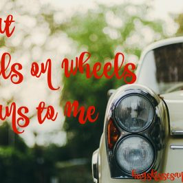 What Meals On Wheels means to me