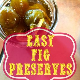 Easy Fig Preserves