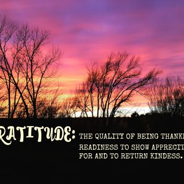 In a Word: Gratitude