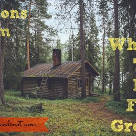 Lessons from Where The Red Fern Grows