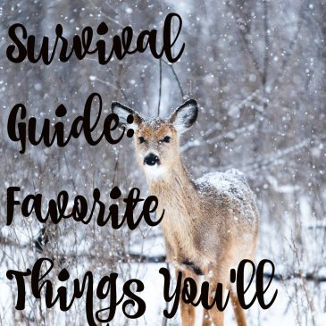 Cold Weather Survival Guide: Favorite Things You'll Love