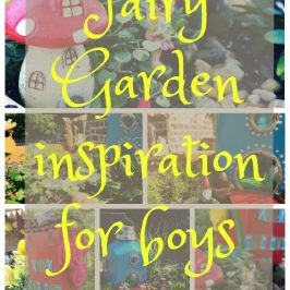 Fairy Garden Inspiration For Boys