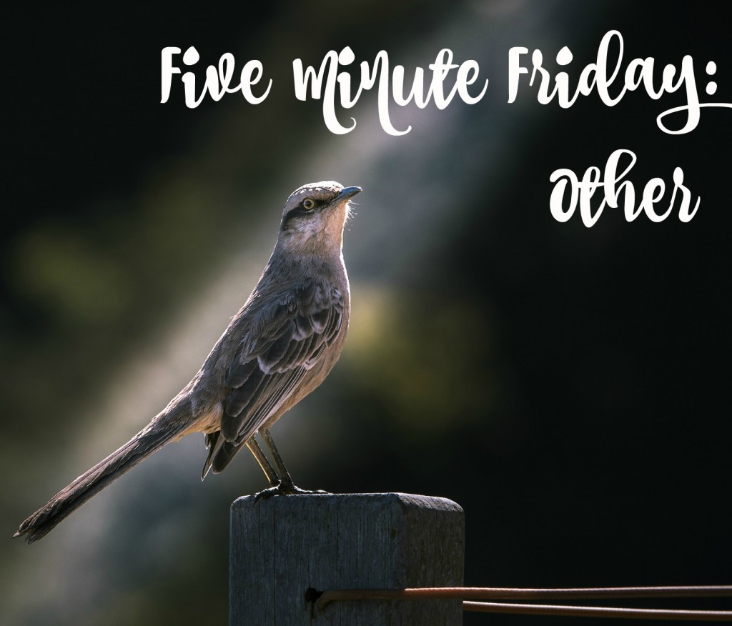 five minute friday other