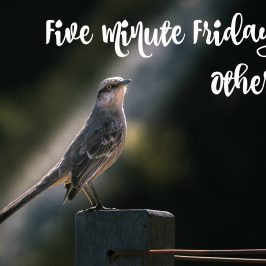 Five Minute Friday – Other