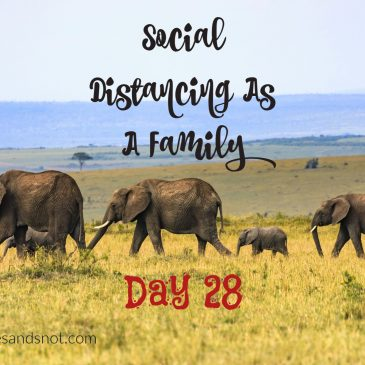 Social Distancing As A Family – Day 28