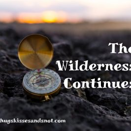 The Wilderness Continues