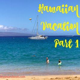Hawaiian Vacation – Part 1