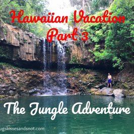 Hawaiian Vacation – Part 3 Maui Hiking Adventure